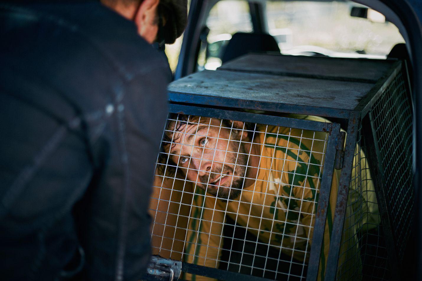Veijo (Matti Onnismaa) on armollinen eläimille, mutta ei välttämättä lemmikkien omistajille. Hän on laittanut koiranomistajan (Ilari Johansson) häkkiin miettimään tekojaan.