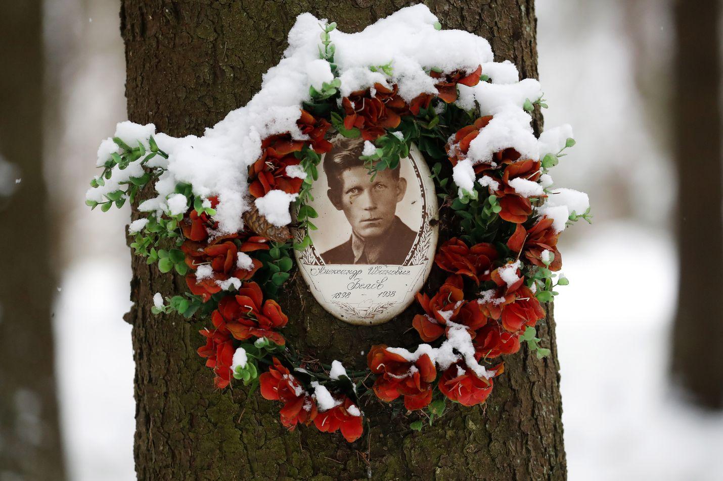 """Historiantutkijat ja vapaaehtoiset tekevät työtä henkilöllisyyden, kuten nimen, palauttamiseksi vainotuille ja tapetuille """"kansanvihollisille"""": Pietarin ulkopuolella Levashovossa lepää yksi monista, 1938 surmattu Aleksandr Belov."""