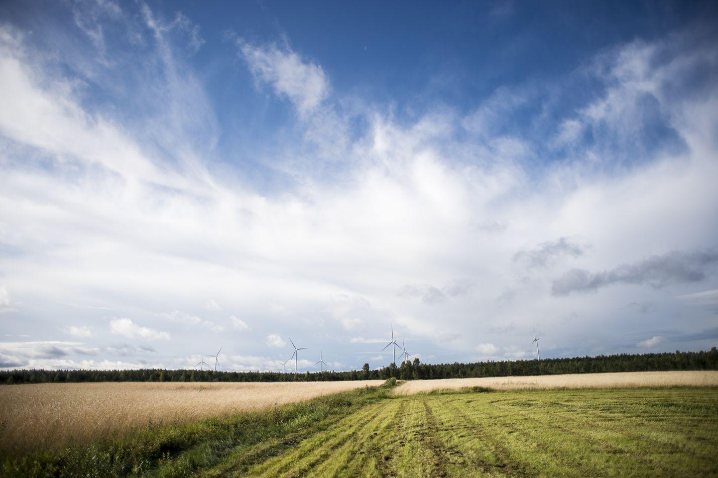 Päästöjen vähentämistä on pidetty maataloudessa erittäin vaikeana. Uudet laskelmat osoittavat, että mittavat leikkaukset ovat kuitenkin mahdollisia.