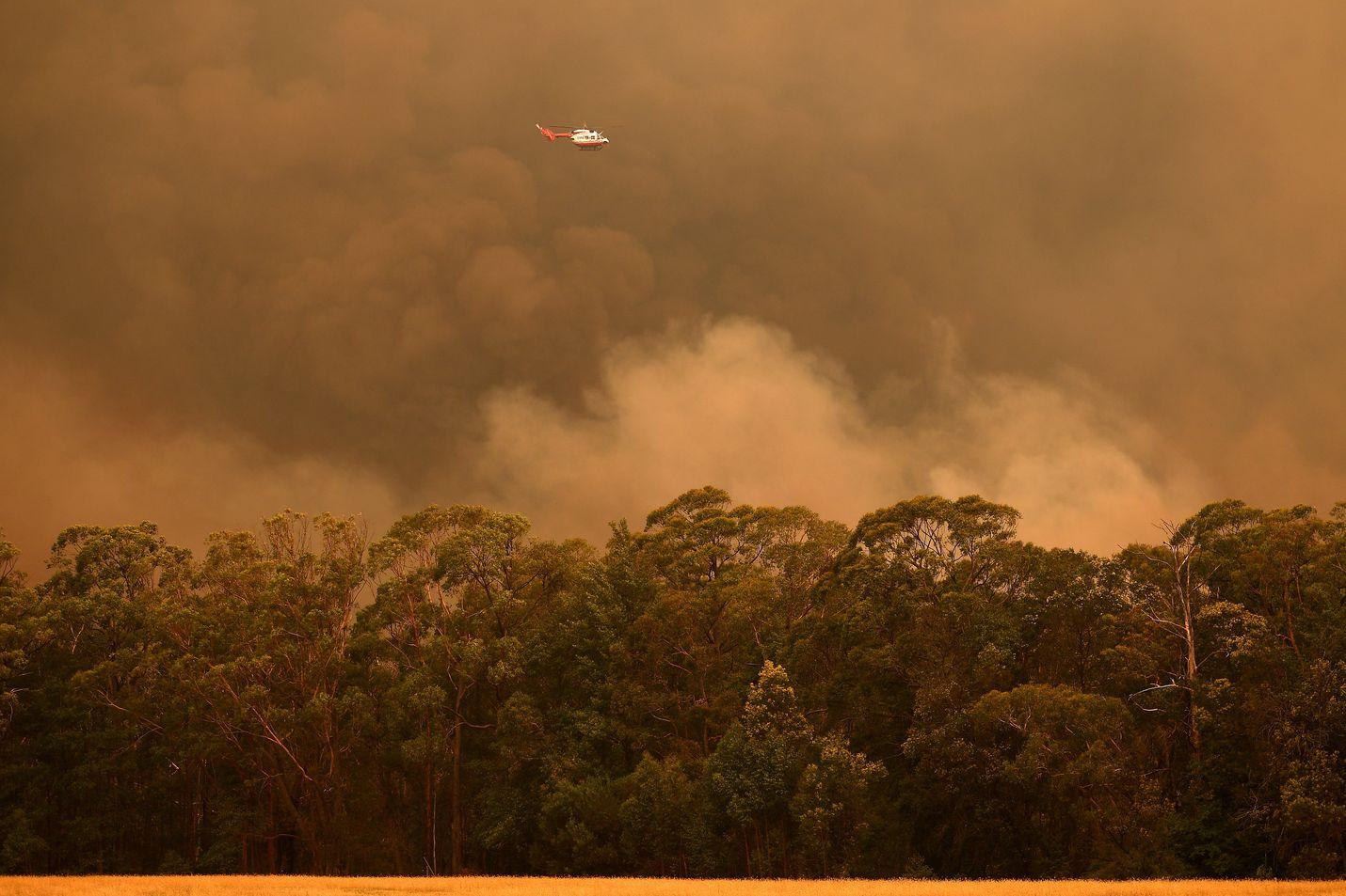 Palotilanne on tällä hetkellä hälyttävin New South Walesin osavaltiossa. Kuva on Bilpinin alueelta Sydneyn länsipuolella.