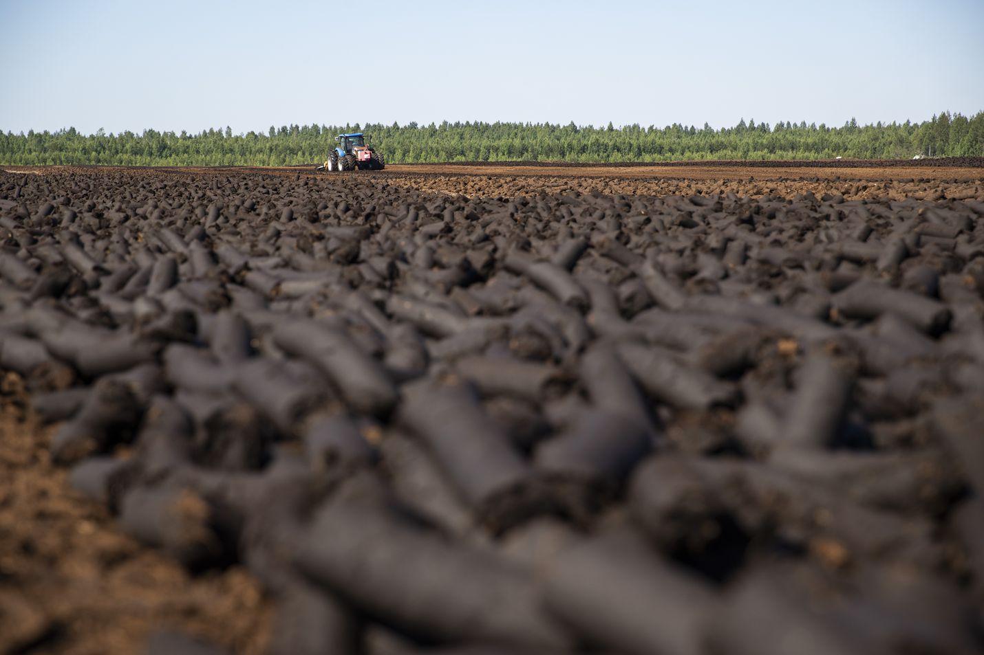 Hallitus haluaa vähentää turpeenpolttoa erityisesti ilmastosyistä. Luonnonsuojelupuolelta perusteluihin lisätään elonkirjo ja vesistövaikutukset.