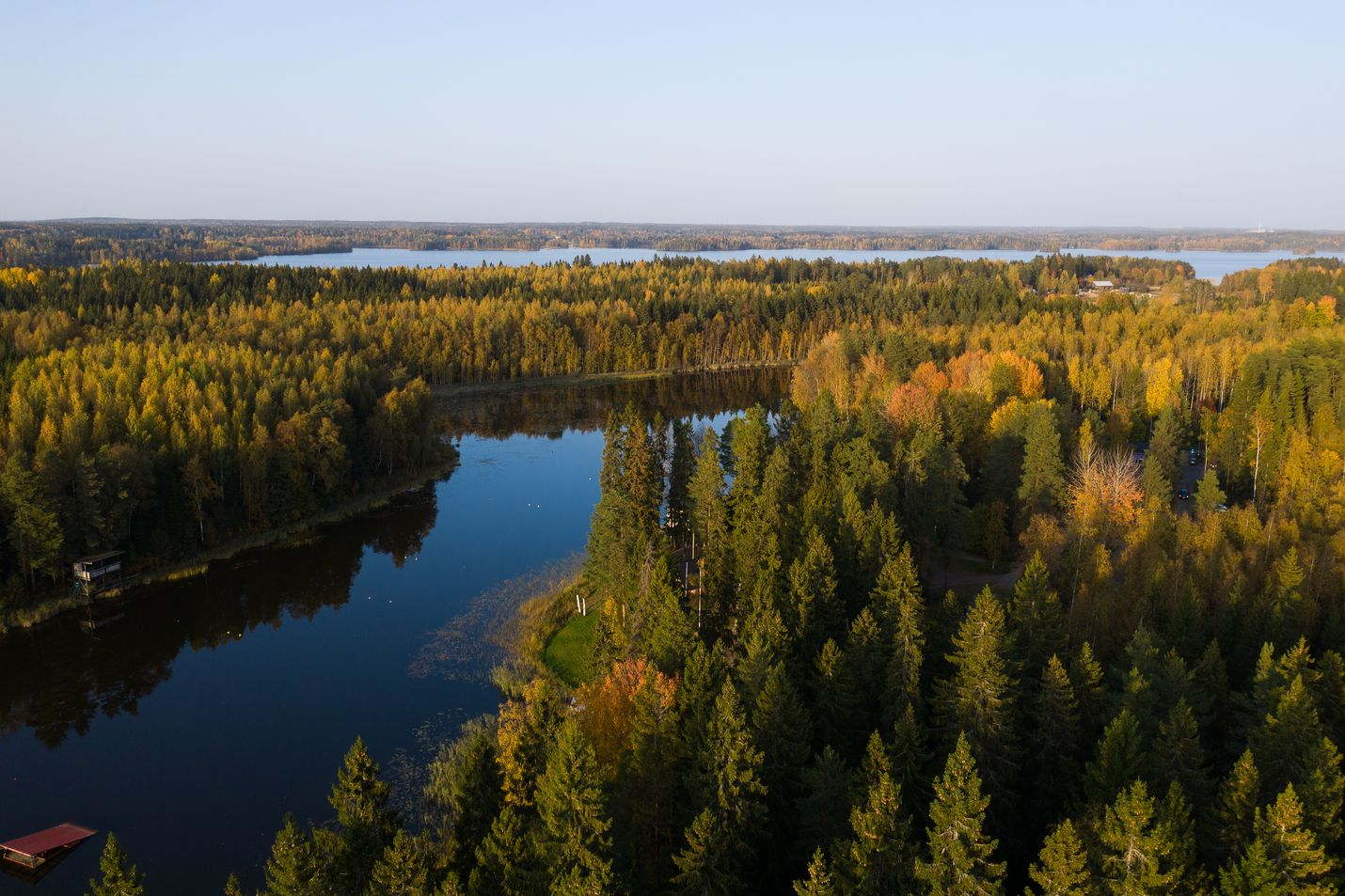 Hiilinielujen kasvattamiseksi ostetaan esimerkiksi metsiä. Uusia hiilinieluja voidaan ostaa myös hiilikompensaatioita tarjoavilta toimijoilta. Erilaisia hiilipörssejä tulee koko ajan lisää.