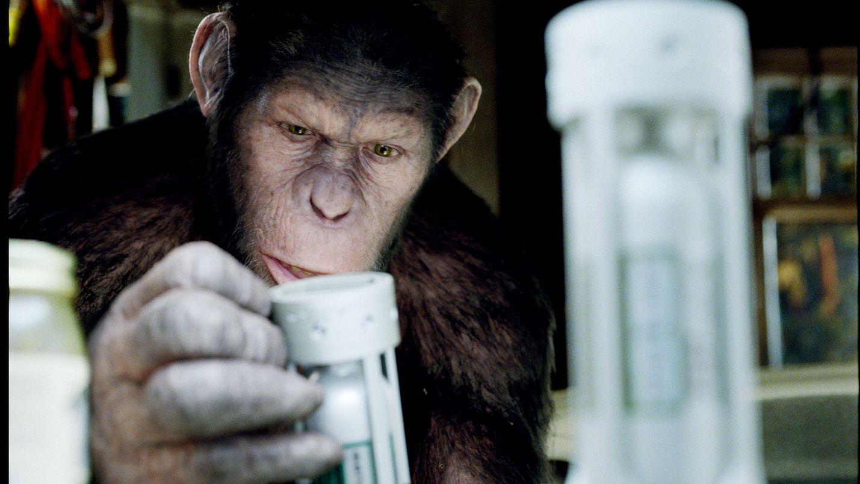 Lääkelaboratorion koe-eläinsimpanssin poikanen päätyy tutkijan kotiin lemmikiksi. Pian selviää, että simpanssin elimistöön on päätynyt Alzheimerin tautiin kehitettyä lääkettä, joka tekee simpanssista huomattavasti lajitovereitaan älykkäämmän