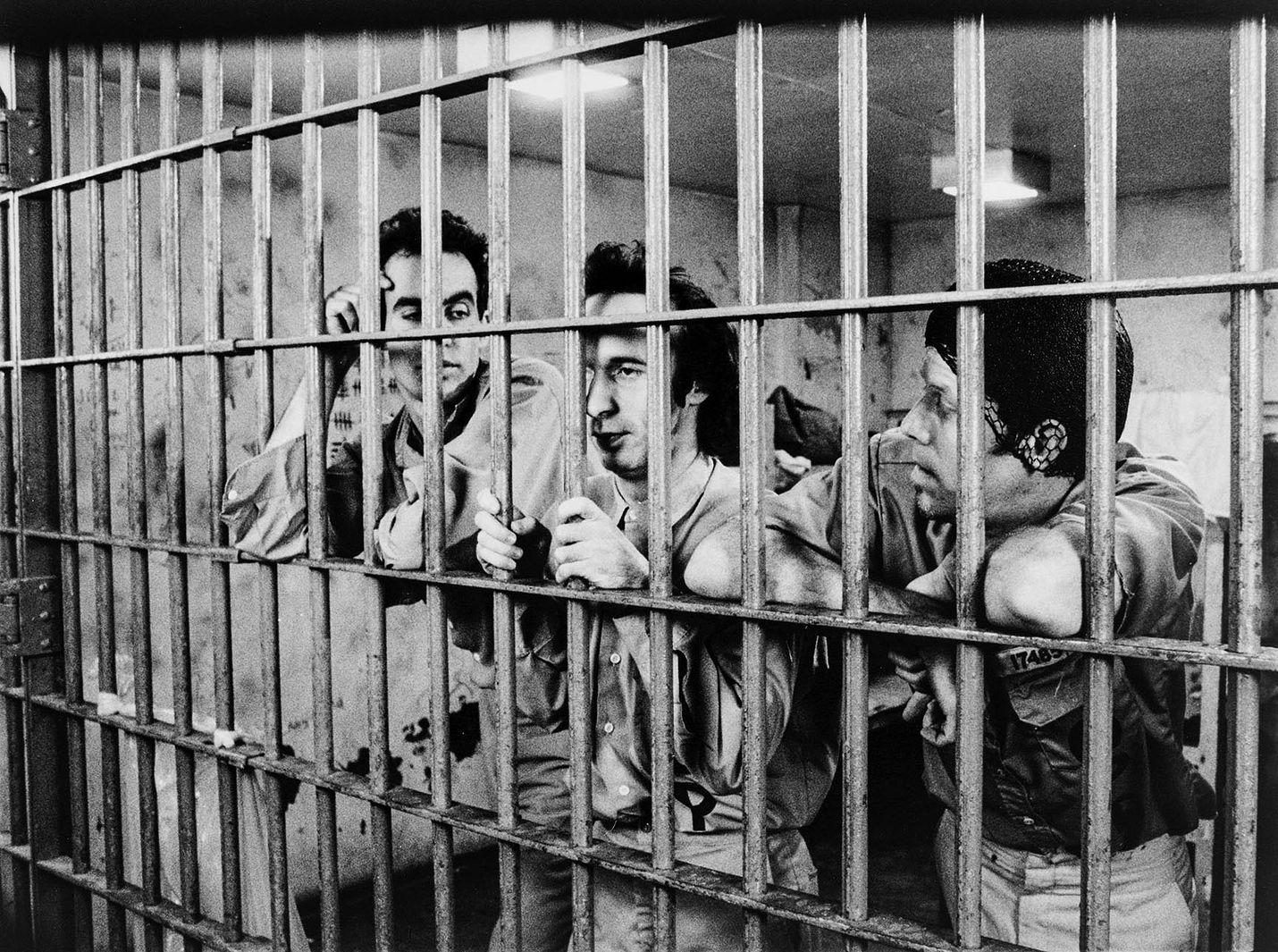 Down by law on surullisen kaunis komedia työttömästä tiskijukasta, sutenööristä ja italialaisesta turistista, jotka suljetaan Louisianassa samaan selliin.