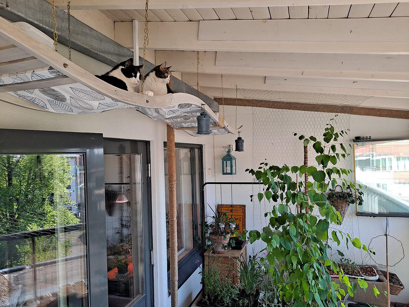 – Parveke on minulle olohuone, harrastetyötila, ruokailu- ja kahvittelupaikka, mietiskelytila ja kasvitarha – niin, ja tietysti se on myös kissojen parveke, kertoo Marja Solla.