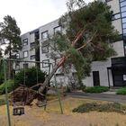 Puu oli kaatunut uhkaavan näköisesti päin kerrostaloa Karpalopolulla Kourujärvellä.