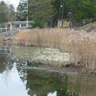 KUVA: Jukka Saaristo