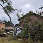 Syväraumassa sijaitsevan talon pihalla kaatui iso koivu, joka vei myös toisen koivun mennessään. Kuva: Maria Raitanen