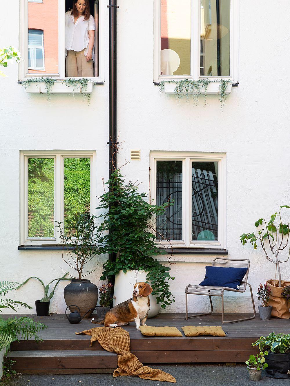 Moderni koti vanhassa tallissa