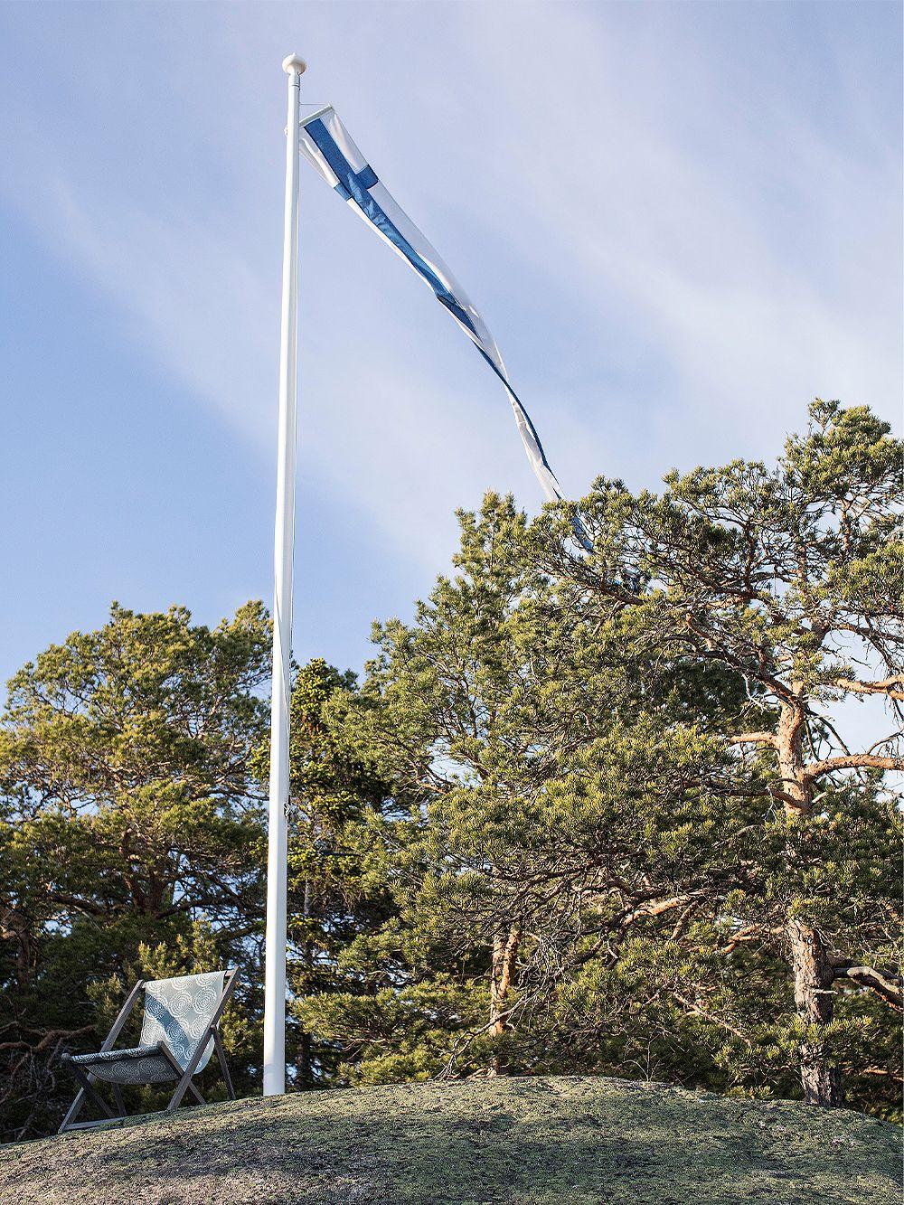 Siniristiviiri lippusalossa
