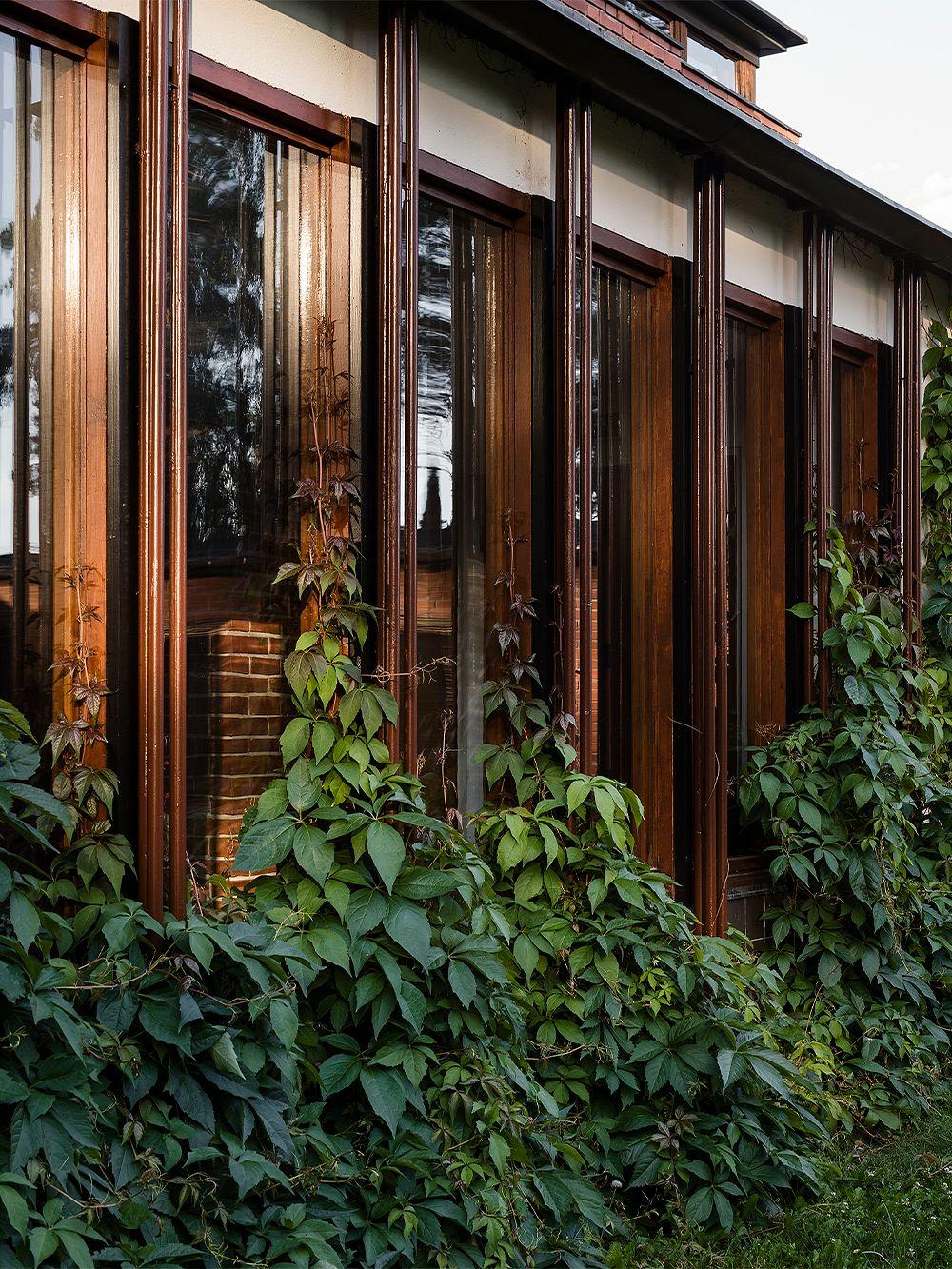 Alvar Aalto Säynätsalon kunnantalo atriumpiha