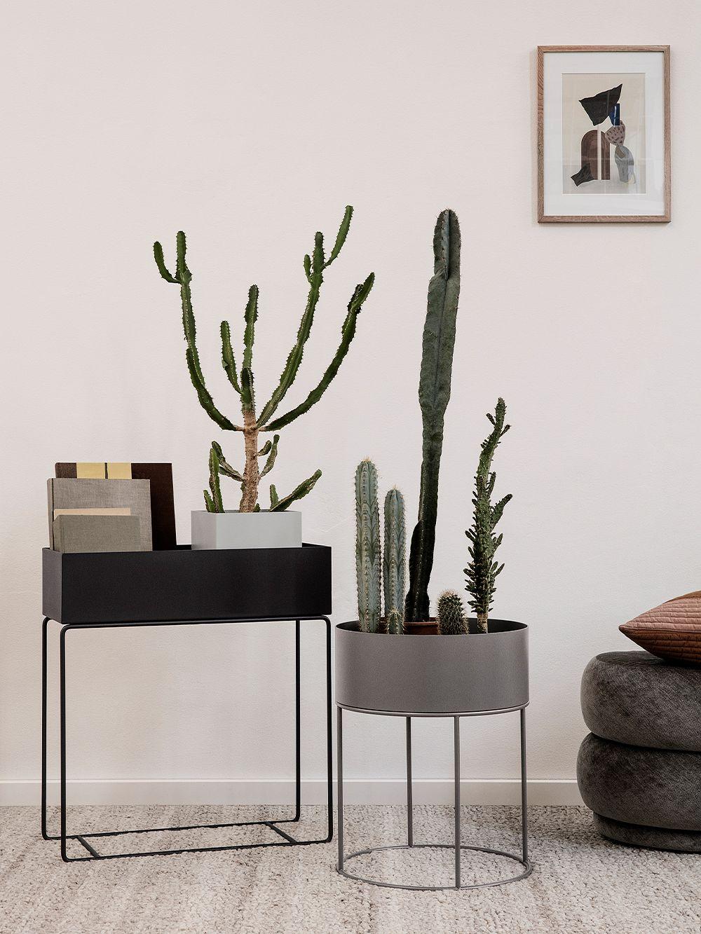 Ferm Living Plant Box kasviteline, lämmin harmaa