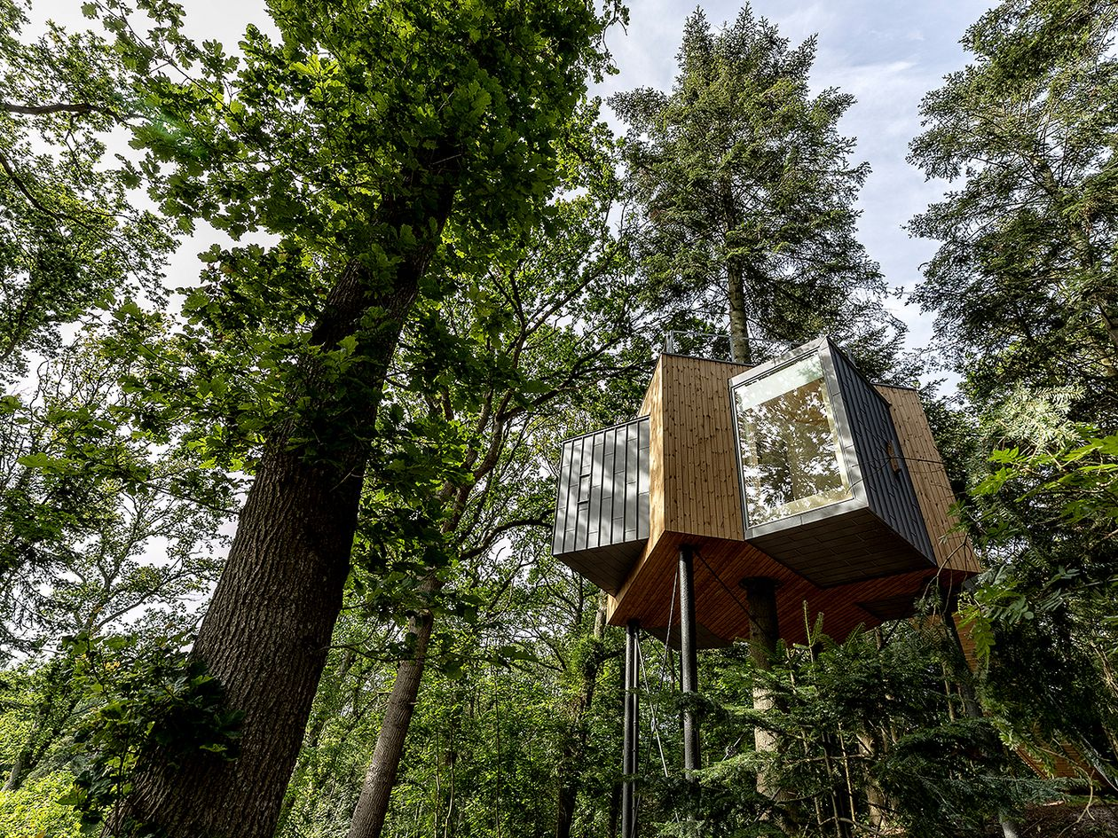 The Treetop Hotel Løvtag