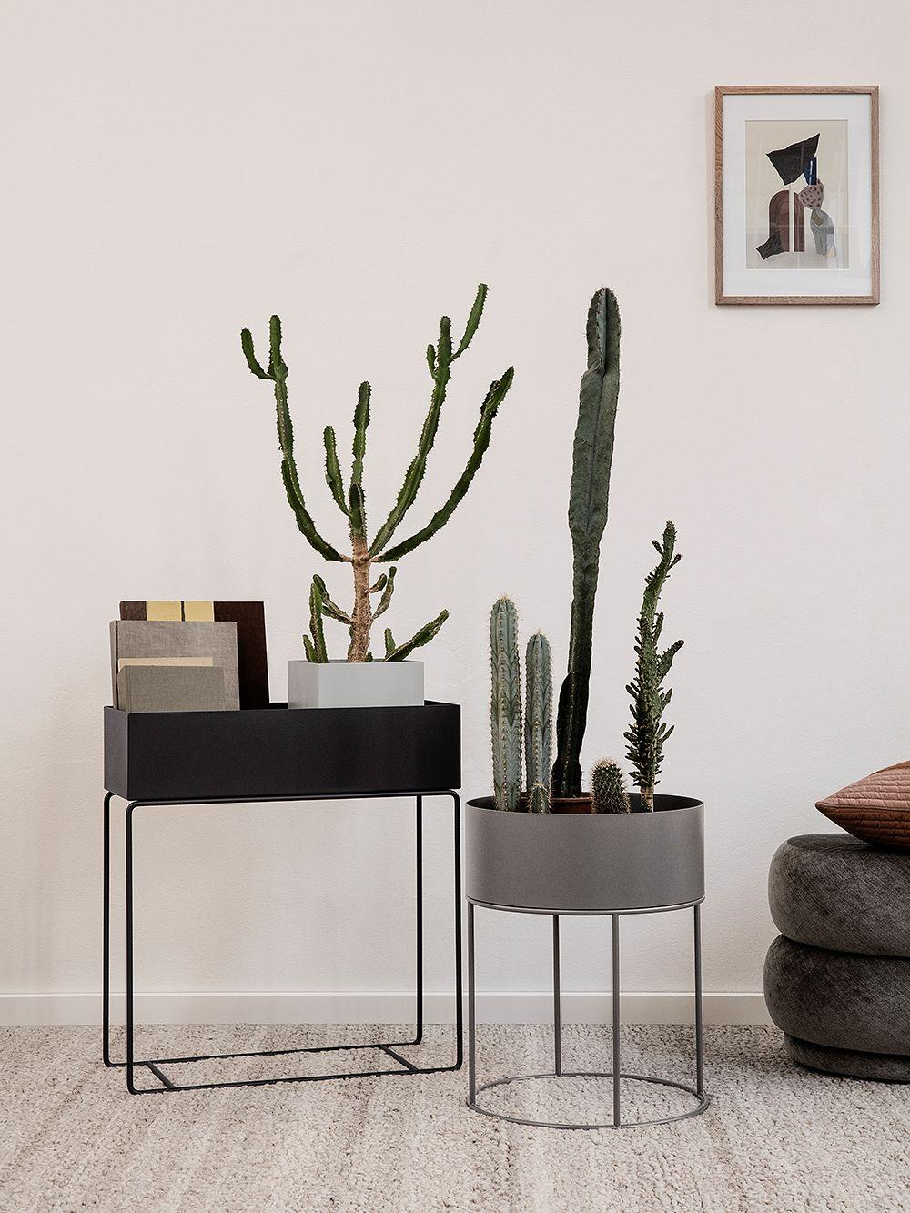 Ferm Living Plan box kasviteline mustana neliskulmaisena ja harmaana pyöreänä.