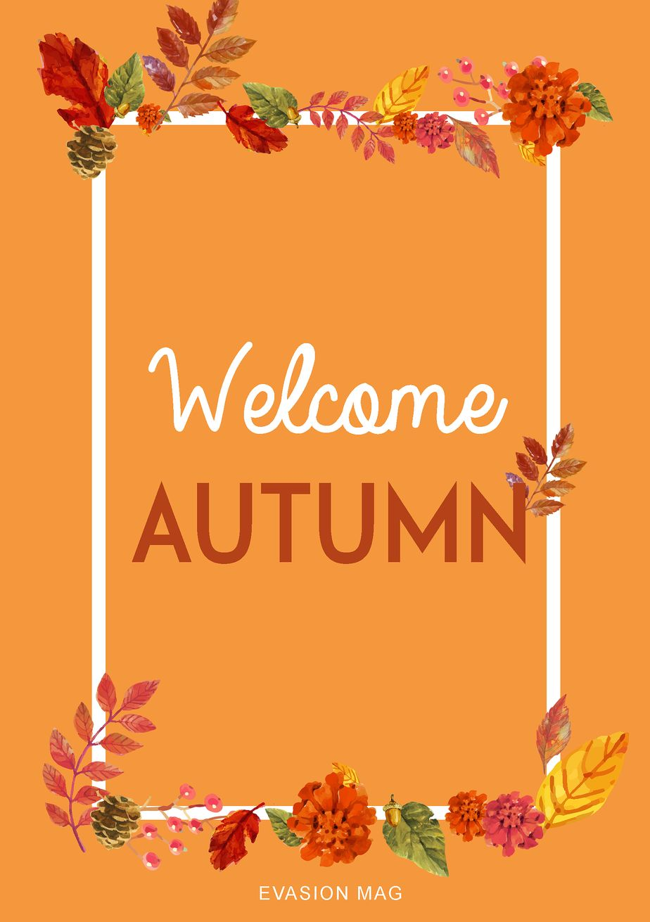 Infographie Welcome Autumn
