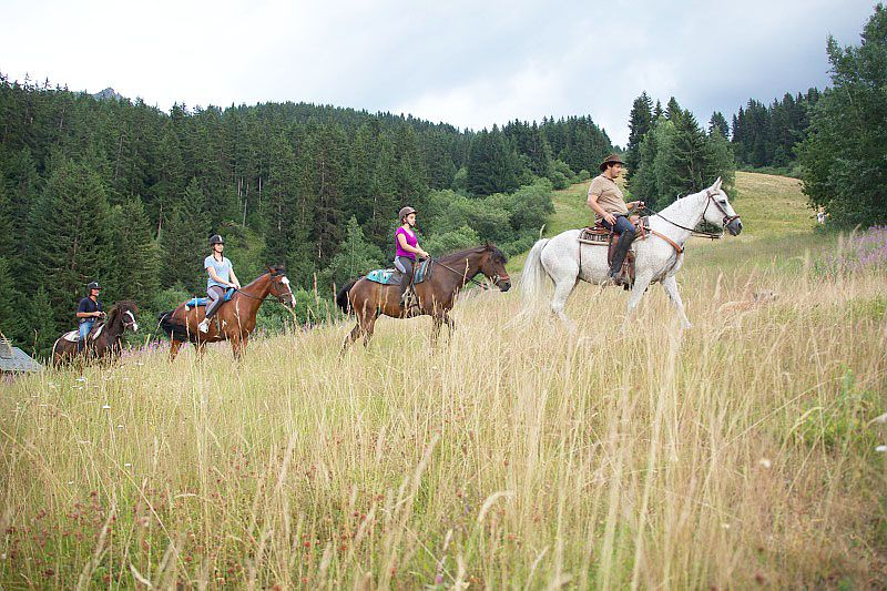 Une balade à cheval