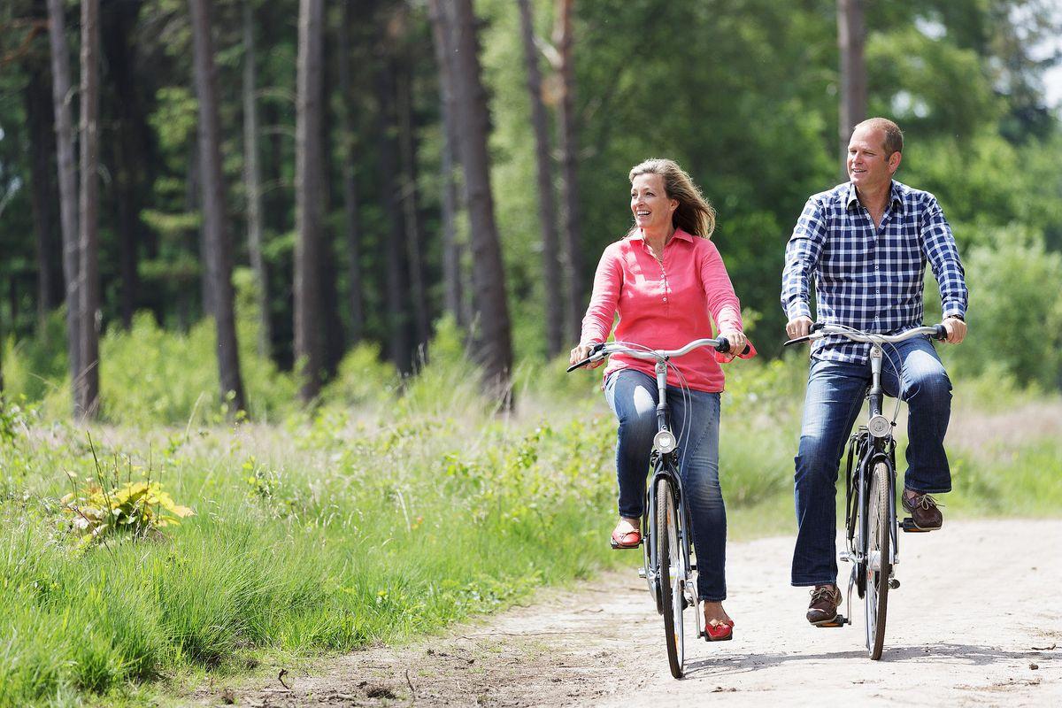 balade à vélo dans les landes