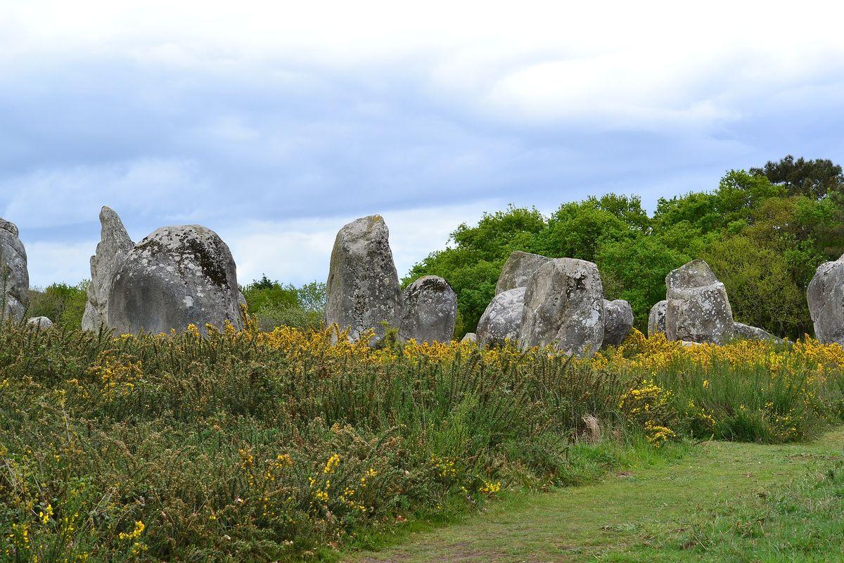 Les menhirs de Carnac