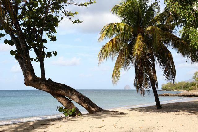 Plage Sainte-Luce - Martinique