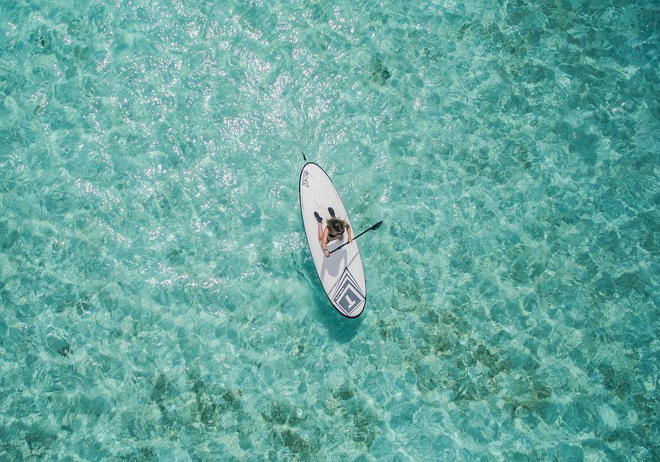 Le paddle