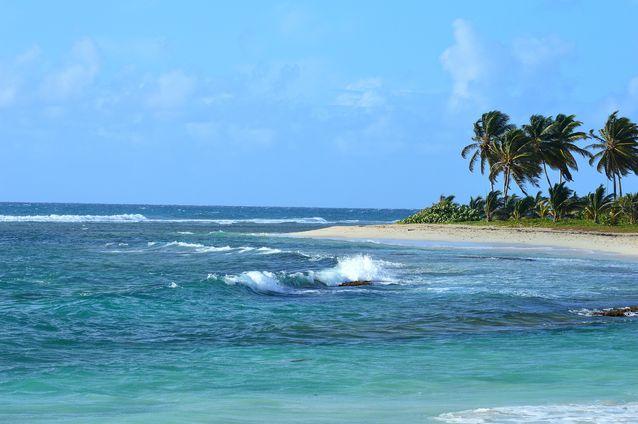 Antilles carnet pratique pierre et vacances vacances d'hiver location d'appartements exotisme