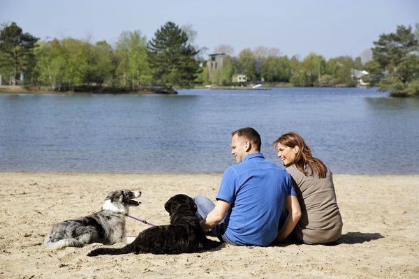 Kein Problem: Urlaub mit Hund bei Center Parcs