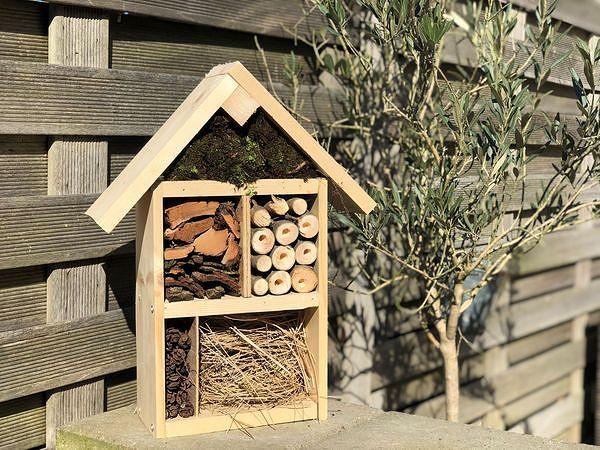 Center Parcs zu Hause – ein Insektenhotel basteln