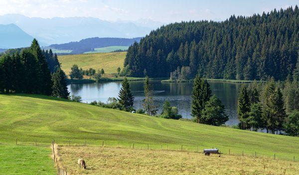 Verblüffende Fakten über Park Allgäu und die Region