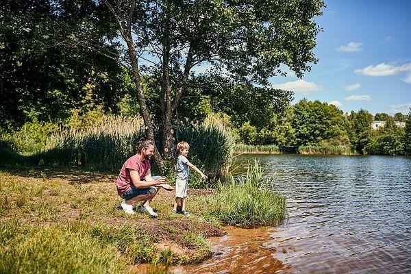 Park Bostalsee – Ausflugstipps für die Umgebung