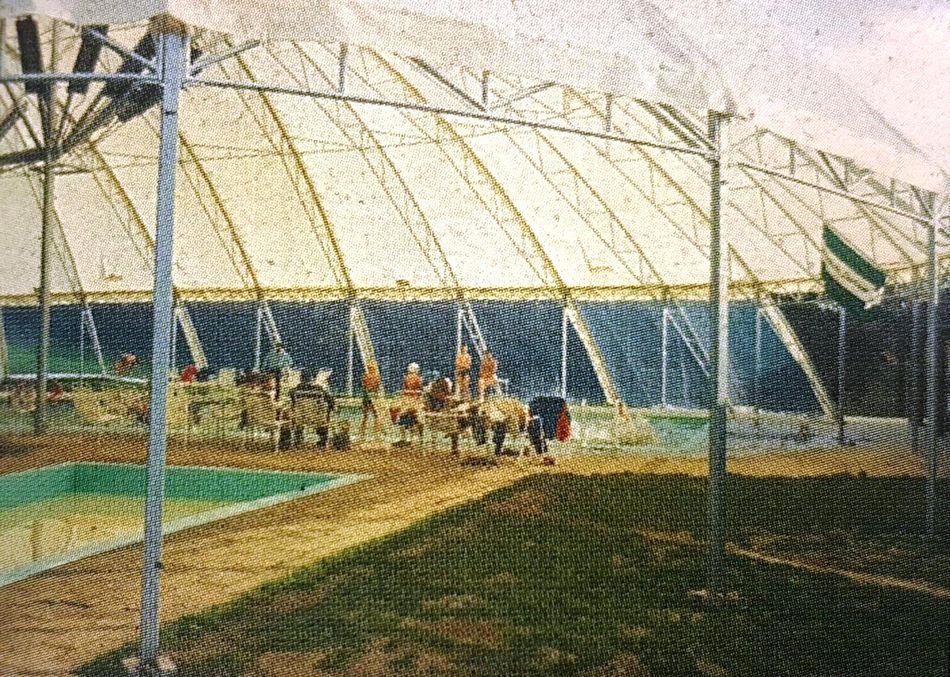 Das erste Center Parcs-Schwimmbad in De Lommerbergen 1968