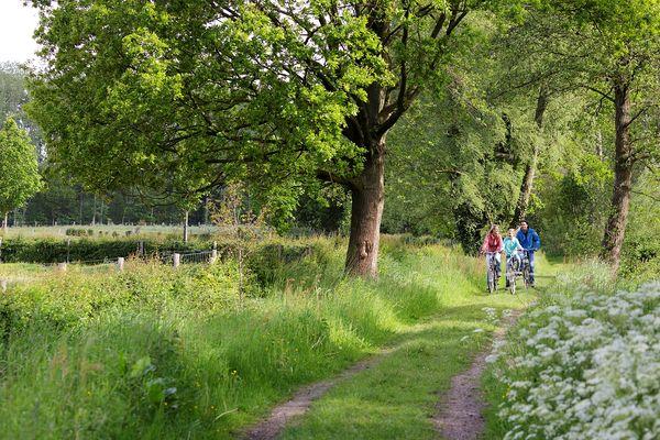 Fahrradtipp: die Griendtsveen-Route