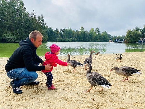 Hanna kommt Gänsen und Enten am See ganz nah