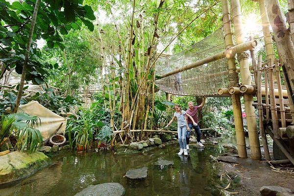 Der Jungle Dome in Het Heijderbos