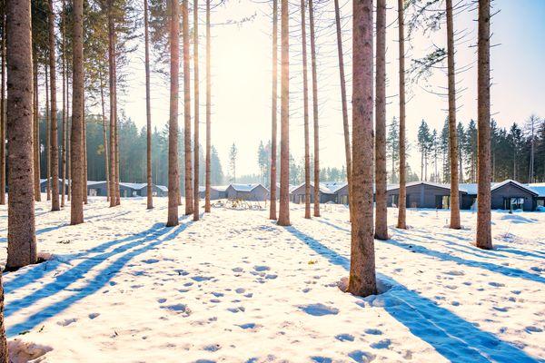 Winterstimmung in Park Allgäu