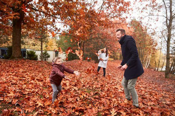 Auch Herbstbilder voller Bewegung können mit den richtigen Kameraeinstellungen sehr gut werden