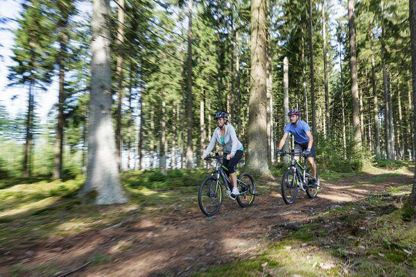 Die vier schönsten Mountainbike-Routen in der Nähe von Center Parcs Les Ardennes