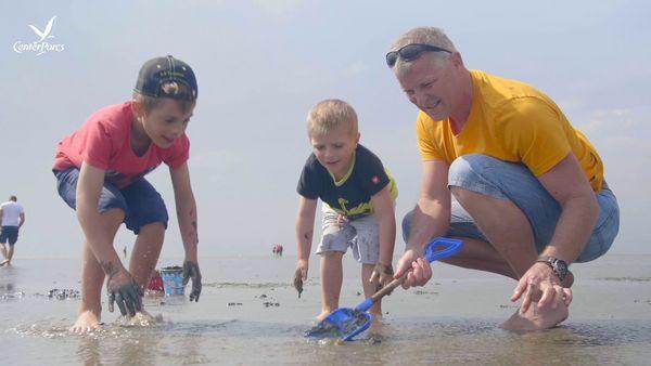 Center Parcs-Glanzlichter: die 5 besten Strandparks