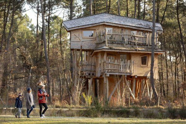 Découvrez les maisons dans les arbres au Domaine du Bois aux Daims