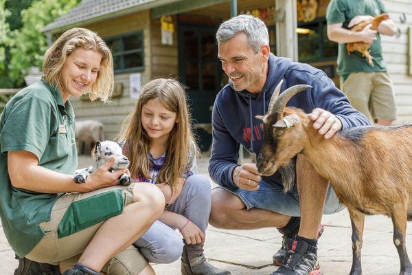Quelques nouvelles des animaux à Center Parcs !
