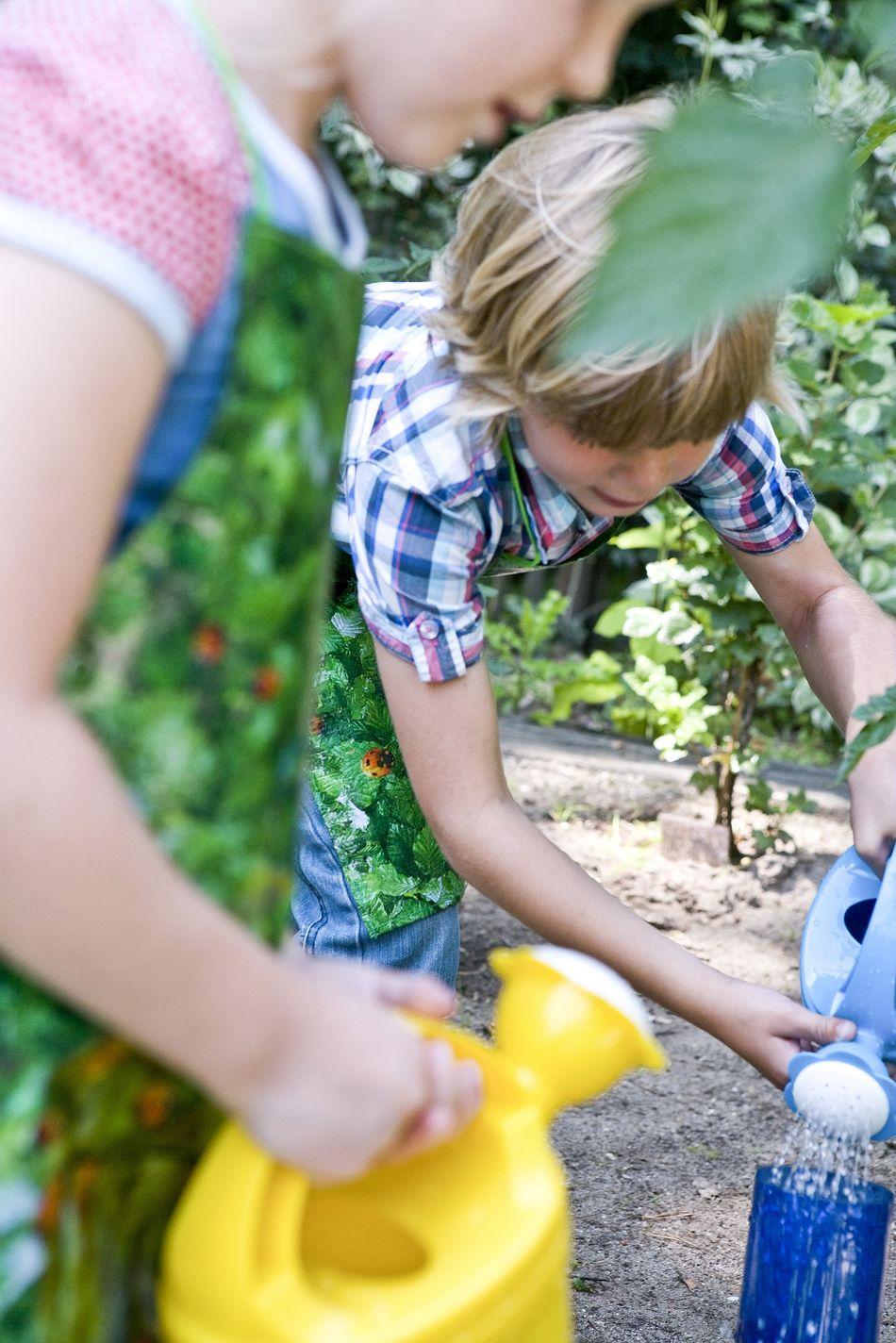 diy-jardinage