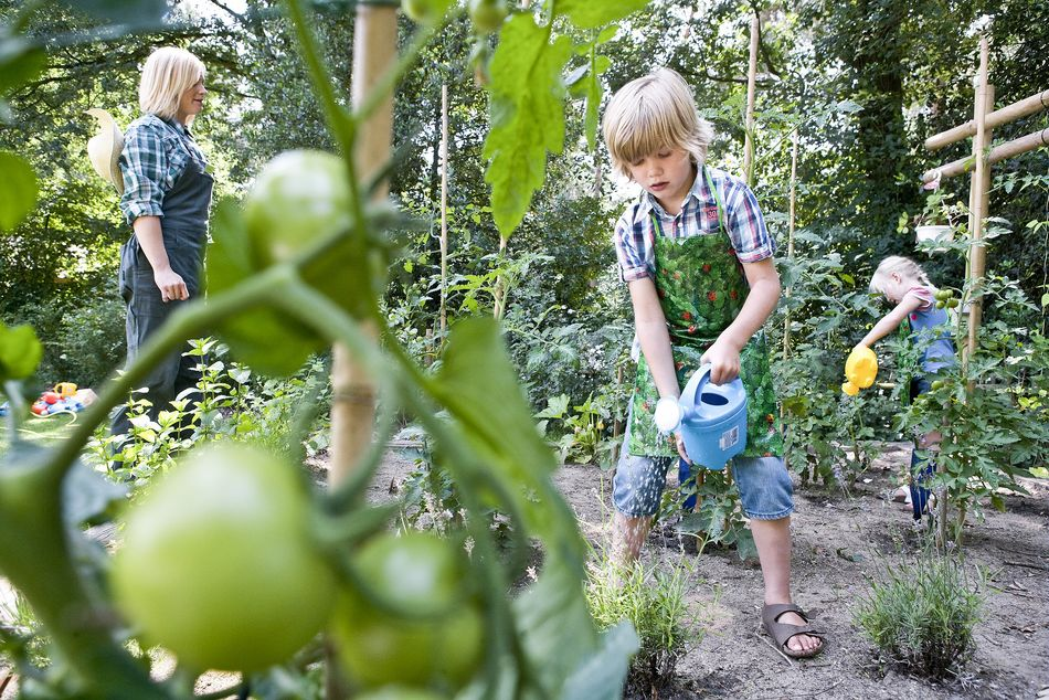 jardinage-diy-center-parcs