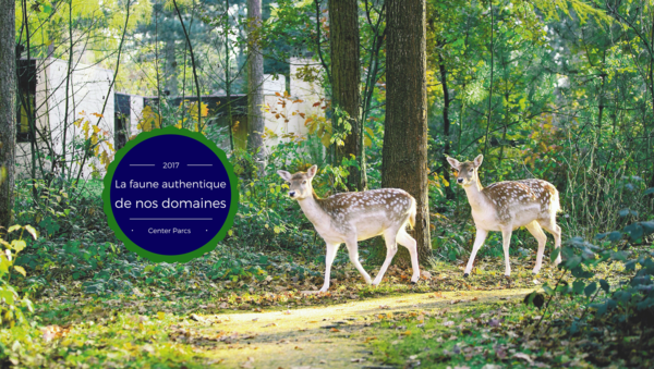 La faune authentique de nos domaines