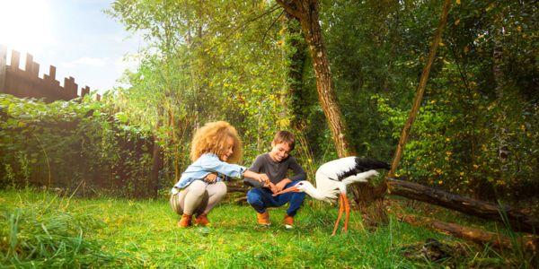 FAQ spéciale nature : 5 réponses à vos questions !