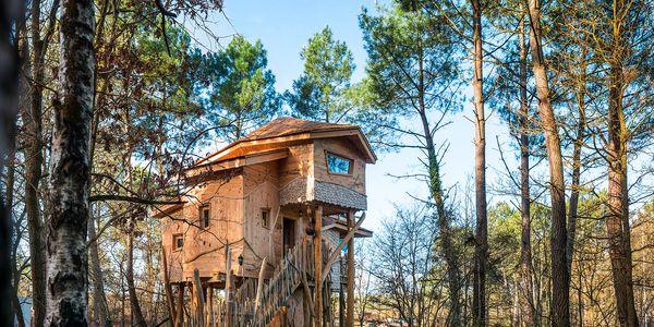 Les Maisons dans les Arbres au Bois aux Daims