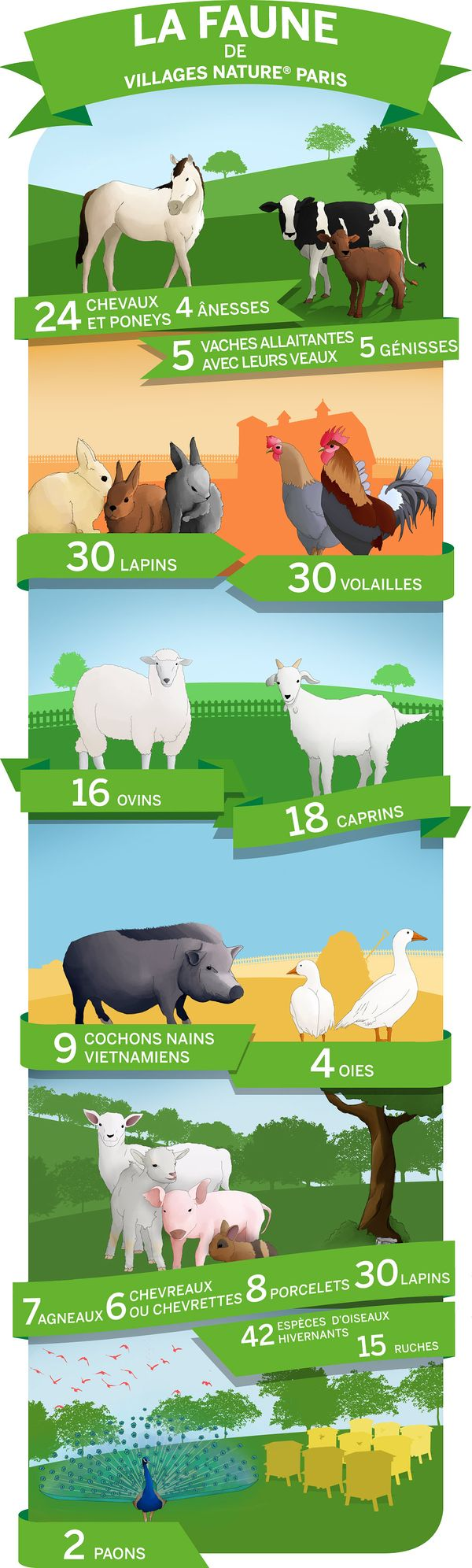 infographie faune villages nature paris