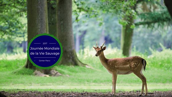 Center Parcs célèbre la Journée mondiale de la vie sauvage