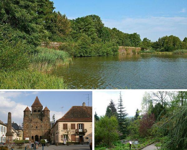 lorraine-etangs-abbatiale-marmoutier-jardin-botanique-col-saverne