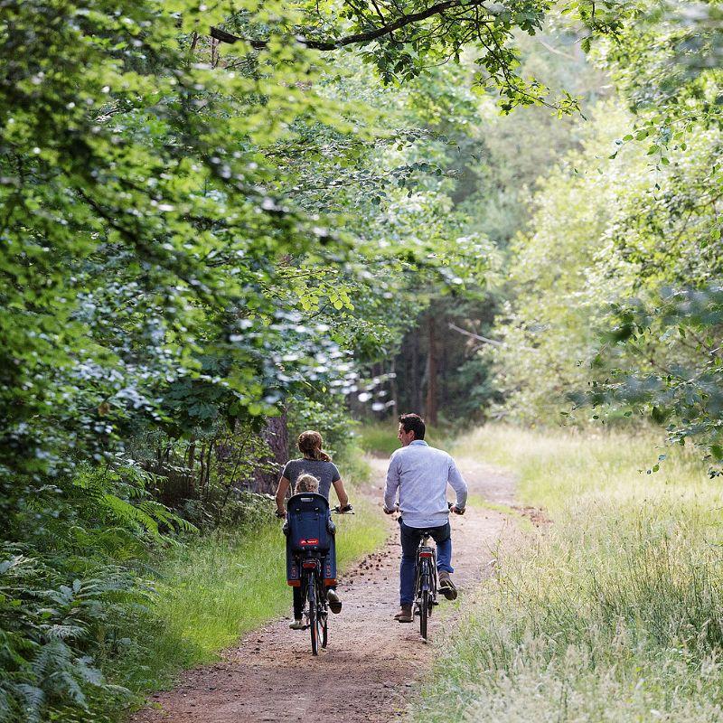Vélo Center Parcs Hauts de Bruyères