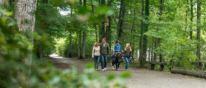 Une famille qui se balade dans la forêt, le fils est sur un poney