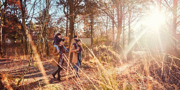 Top 5 des activités de l'automne à Center Parcs !